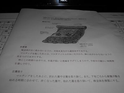 DSCN3189.jpg