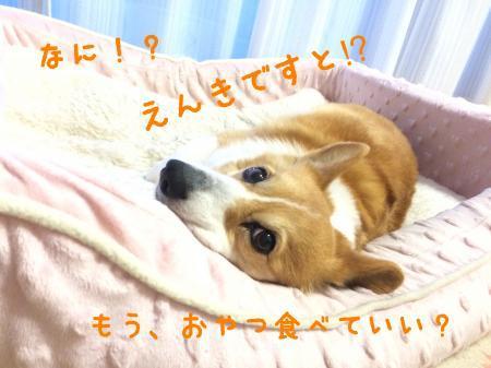 056_convert_20170406195739.jpg