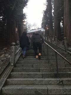 参道を登る