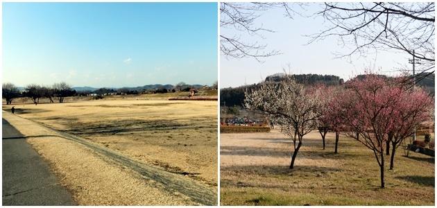 20170304naganogawa1.jpg