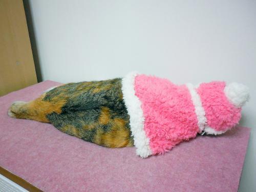 みくピンクケープ寝