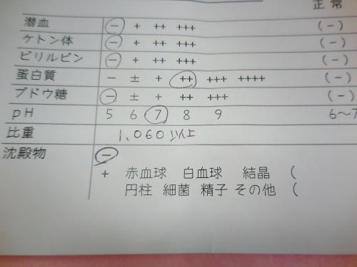 くぅ尿検査