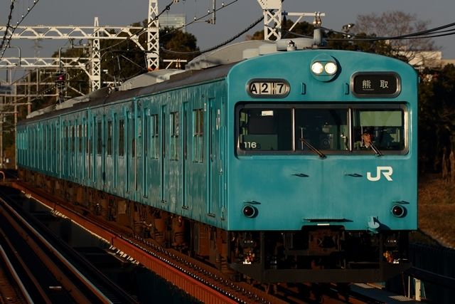 1B1A9566.jpg