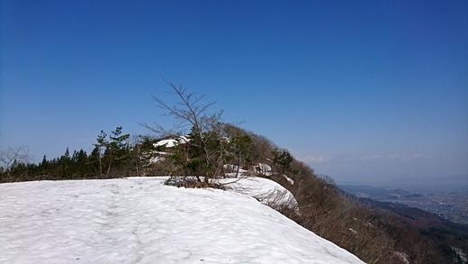20170416-13.jpg