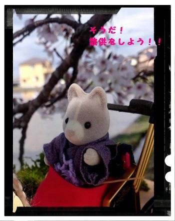 桜の下で①
