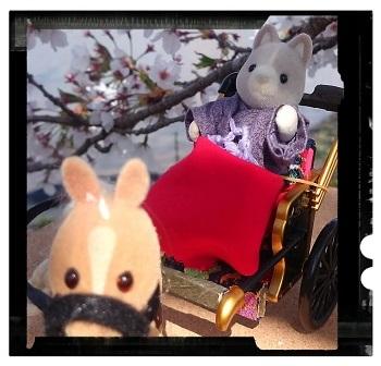 桜の下で②