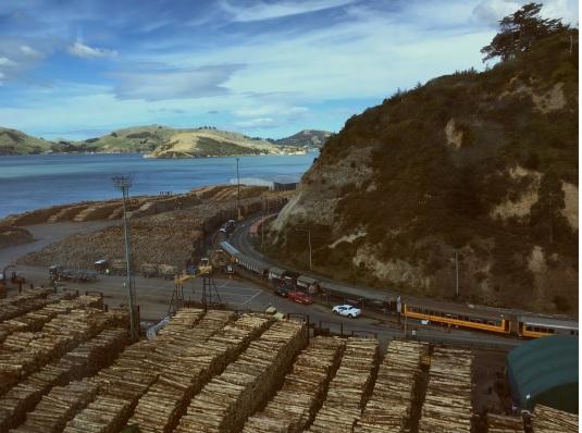3月22日 ニュージーランド チャーマー港付近1
