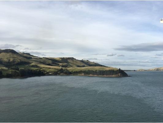 3月22日 ニュージーランド チャーマー港付近2