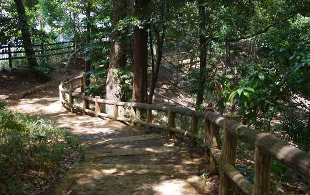 aおとめ山公園5141
