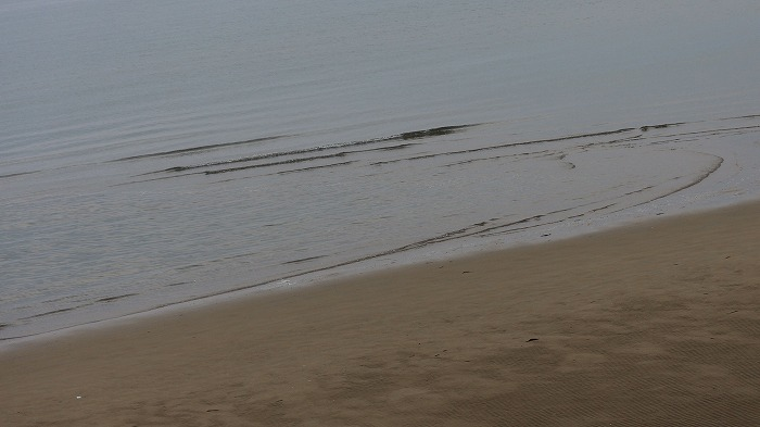 洞門から 波を撮る 29.2.26
