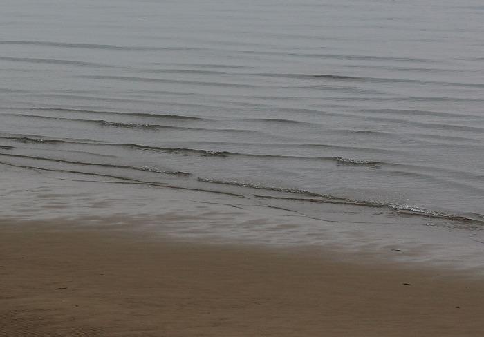 優しい波 カットカット 29.2.26