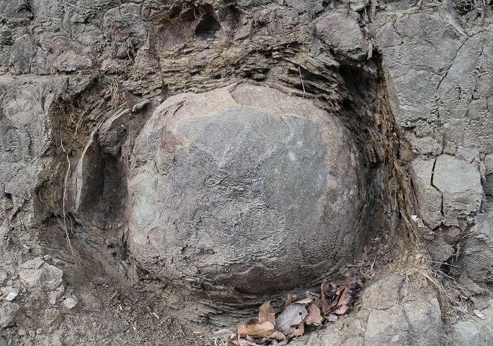 溶岩やって 爺神山 29.2.28