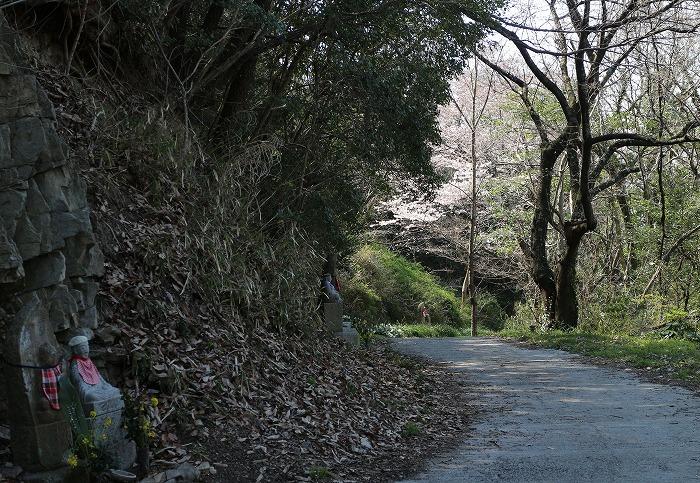 お地蔵様お参りの道 29.4.4