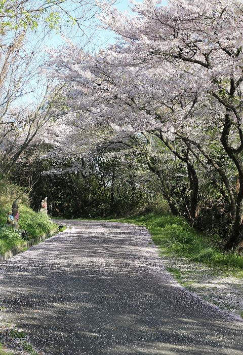 爺神山のお参りの道逆に 29 4 16