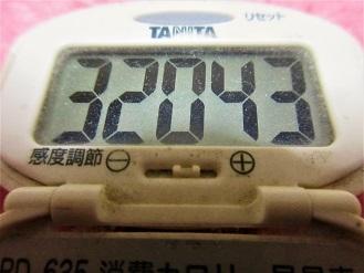 170211-291歩数計(S)