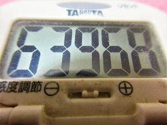 170212-291歩数計(S)