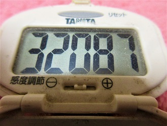 170218-291歩数計(S)