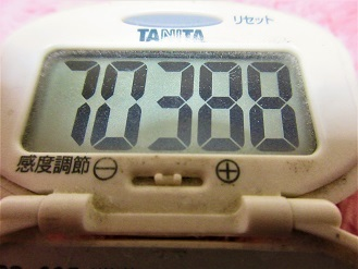 170219-291歩数計(S)