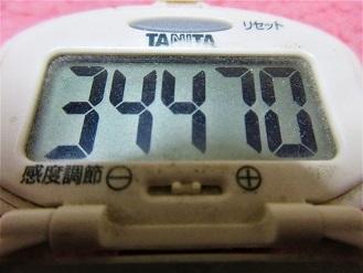 170225-291歩数計(S)
