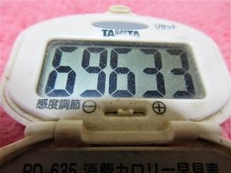 170226-291歩数計(S)