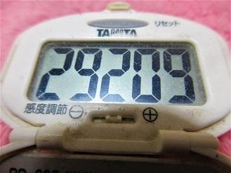 170304-291歩数計(S)