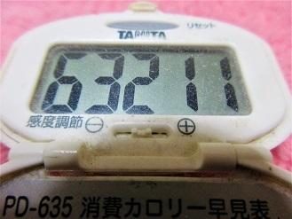 170305-291歩数計(S)
