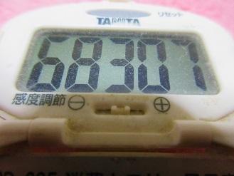 170312-291歩数計(S)