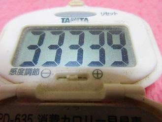 170318-291歩数計(S)