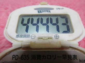 170319-210歩数計(S)