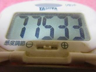 170320-291歩数計(S)