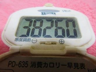 170325-291歩数計(S)