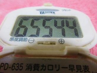170326-291歩数計(S)