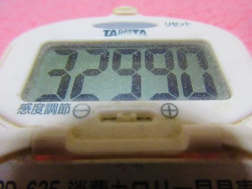 170401-291浅漬け(S)
