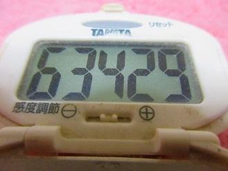 170402-291歩数計(S)