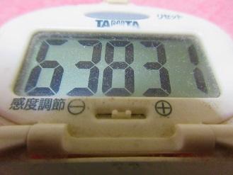 170409-291歩数計()S