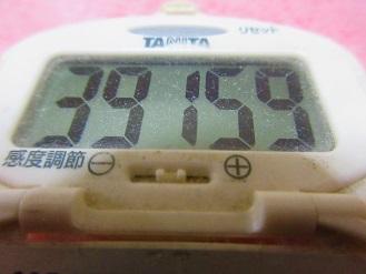170422-291歩数計(S)
