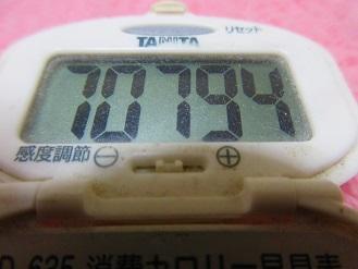 170423-291歩数計(S)