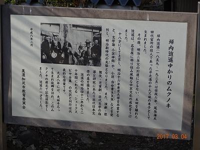 minokamo_015.jpg