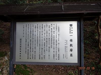shimanto_c_013.jpg