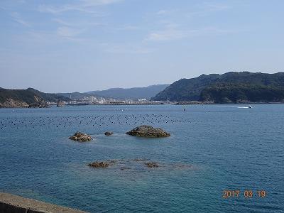tosashimizu_015.jpg