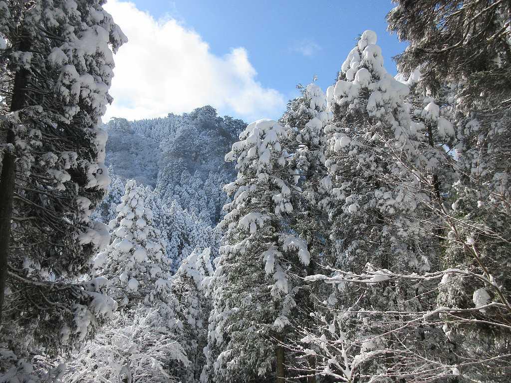 IMG8036JPG対山の雪景色