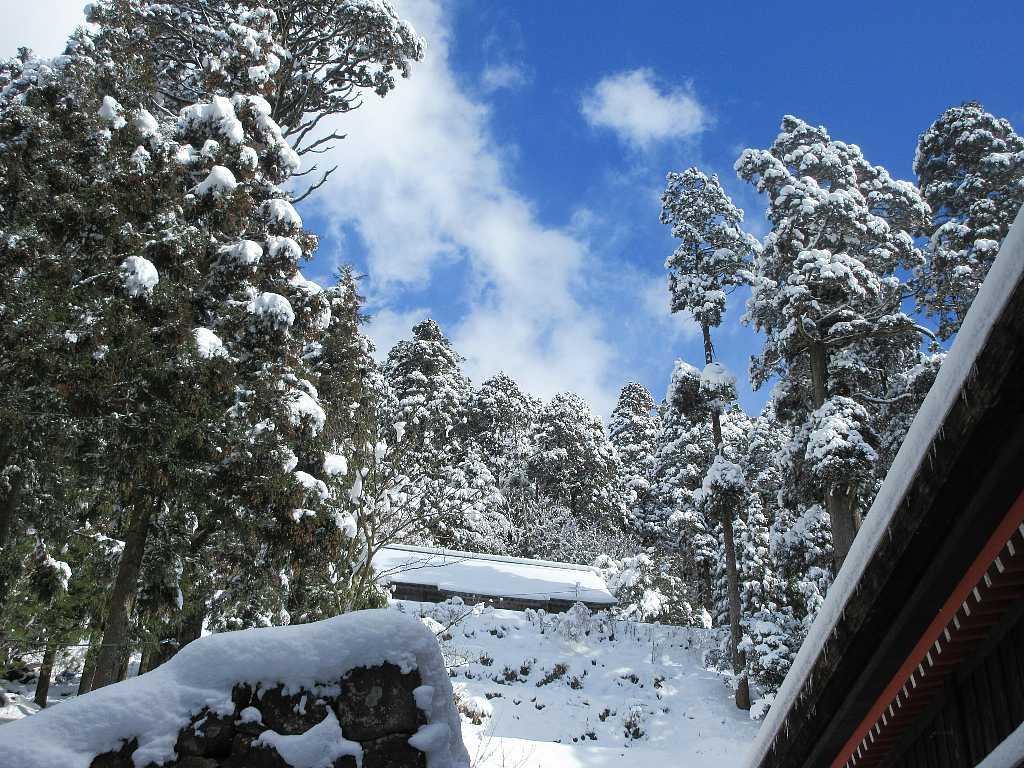 IMG8149JPG社殿裏雪景色
