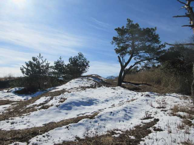 IMG8210JPG残雪