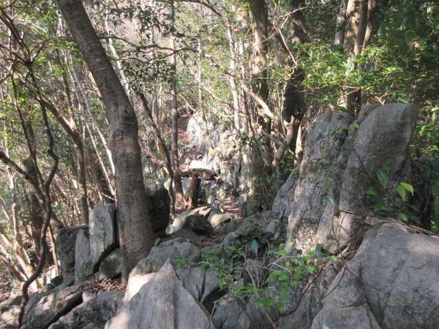IMG8517JPG両貝権現奇岩