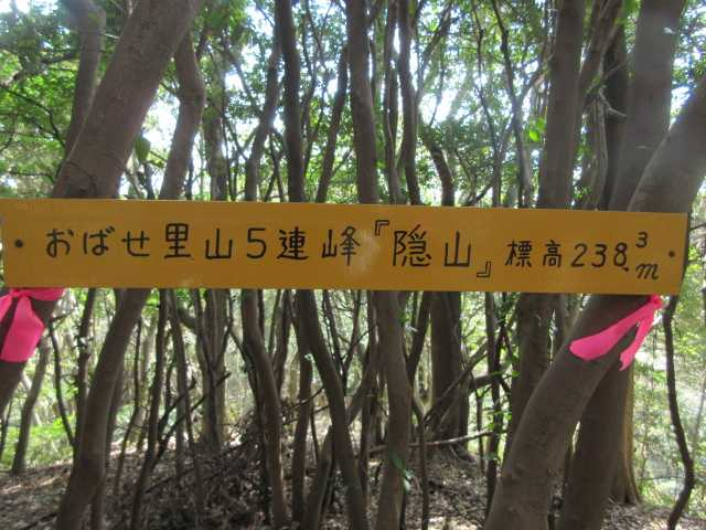 IMG8723JPG隠山