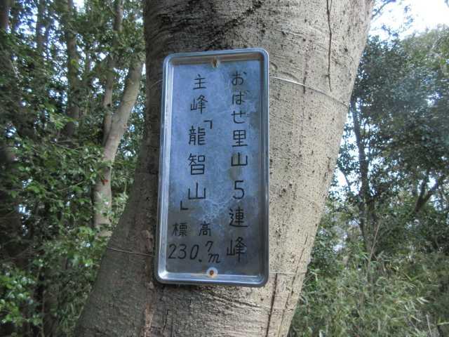 IMG8731JPG標識
