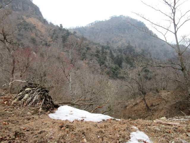 IMG8855JPG北岳を見る