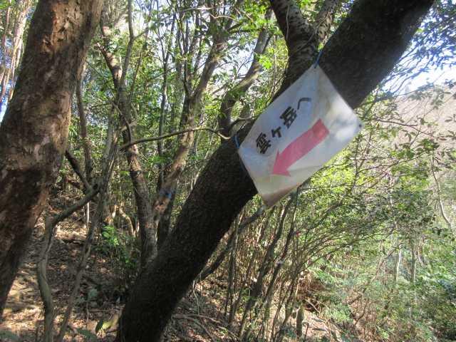 IMG9003JPG雲ケ岳分岐