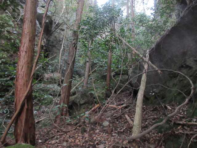 IMG8936JPG岩壁の基部を巻く