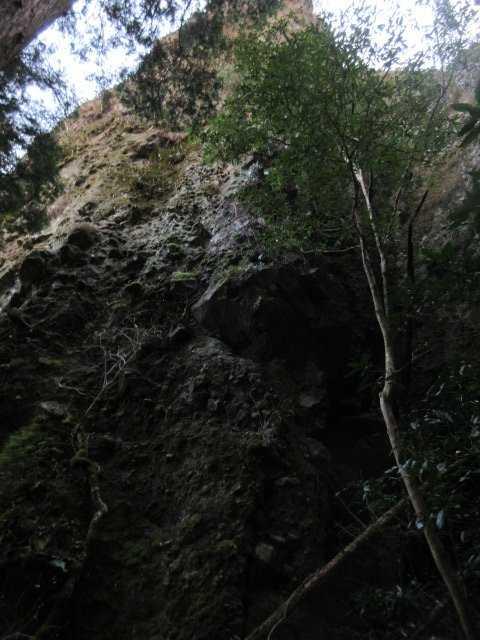 IMG8940JPG岩峰を見上げる